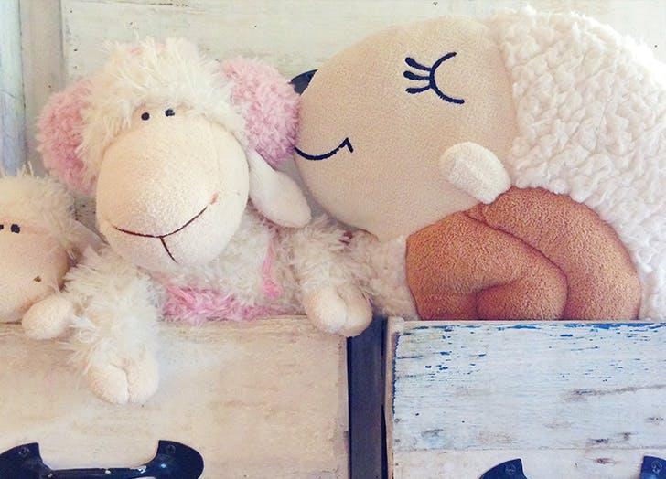 baby talk sheep