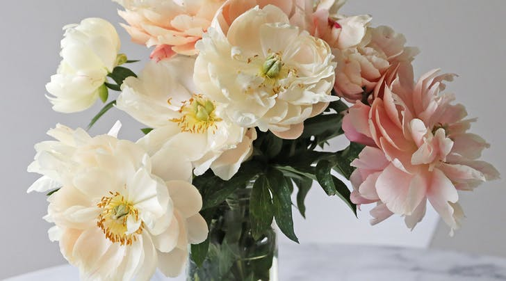 An Easy Trick for Extending the Life of Your Flower Bouquets
