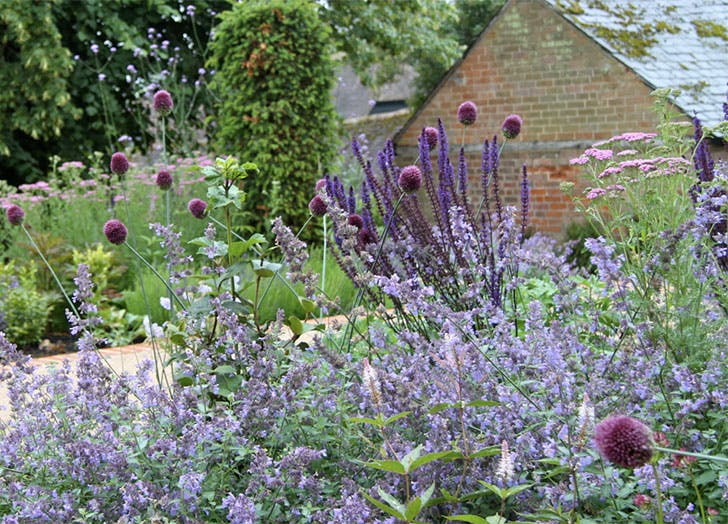 gardensalt