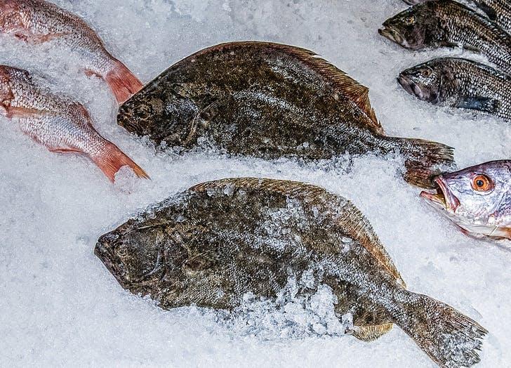 wegmans fish