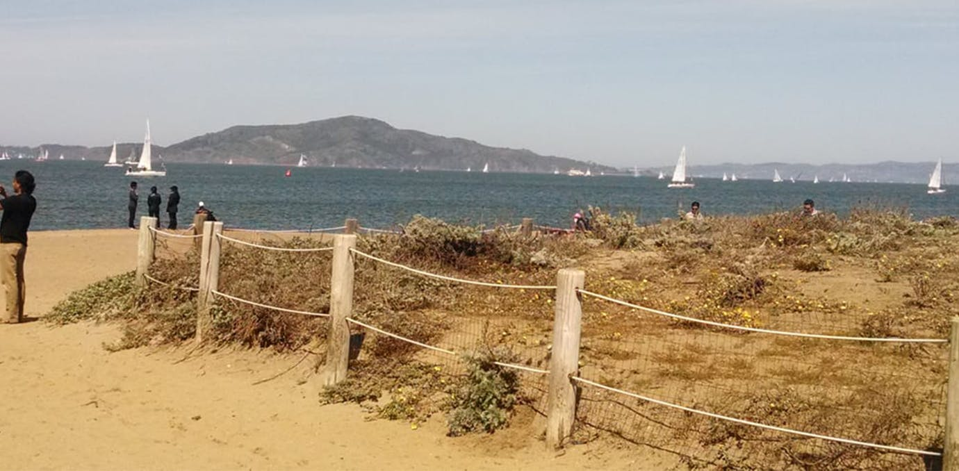 crissy field los angeles to san francisco weekend travels WIDE