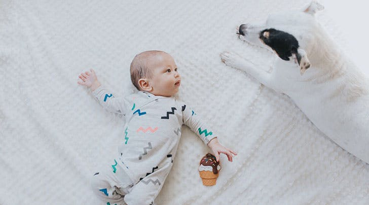 Moms with Dogs Have Healthier Babies, According to Science