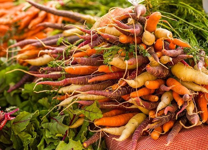 rainbow carrots greenmarket NY