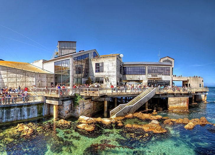 Monterey Bay Aquarium in the US