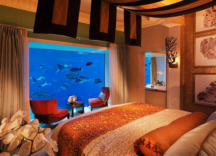 Palm The Atlantic Underwater hotel room