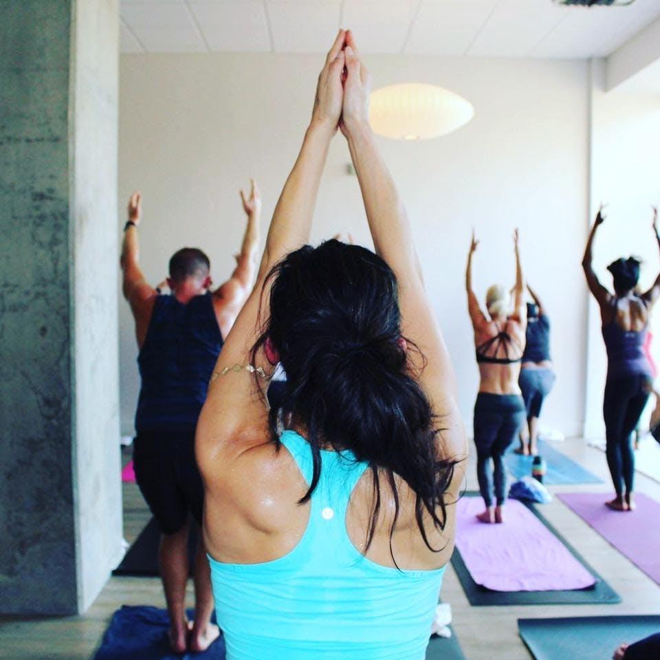 Park Cities We Yogis dallas yoga