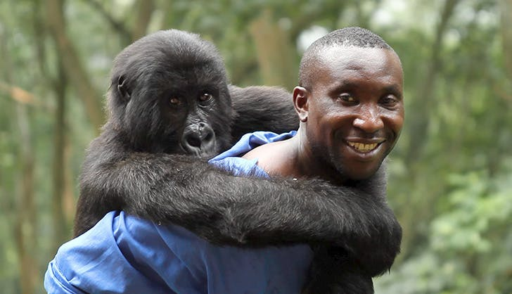 The 11 Best Documentaries You Can Watch on Netflix Right Now.Virunga