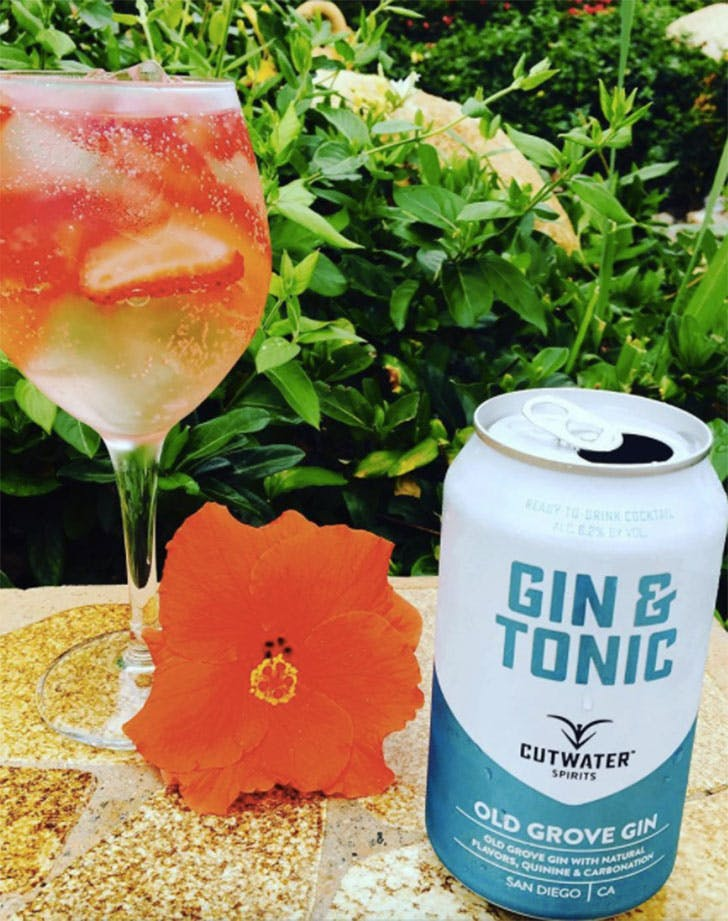 canned cocktails for summer gin and tonic