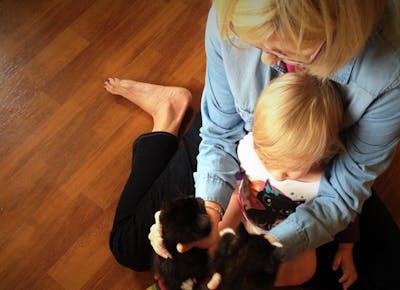 cats child msn