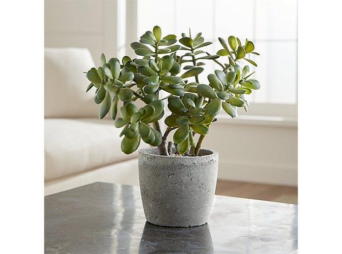 faux plant 10