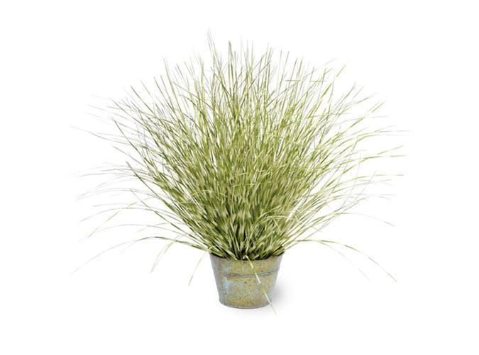 faux plant 7