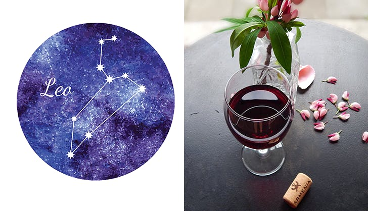 leo syrah wine