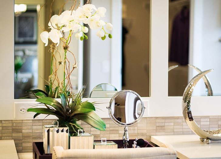 orchid care 4