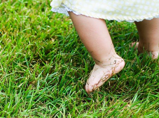 summer kids grass