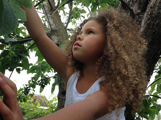 summer kids tree