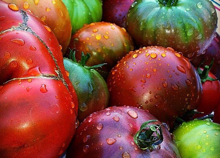 tomatoes fruit storage