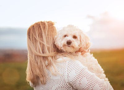Blonde girl hugging her white Maltese dog 400