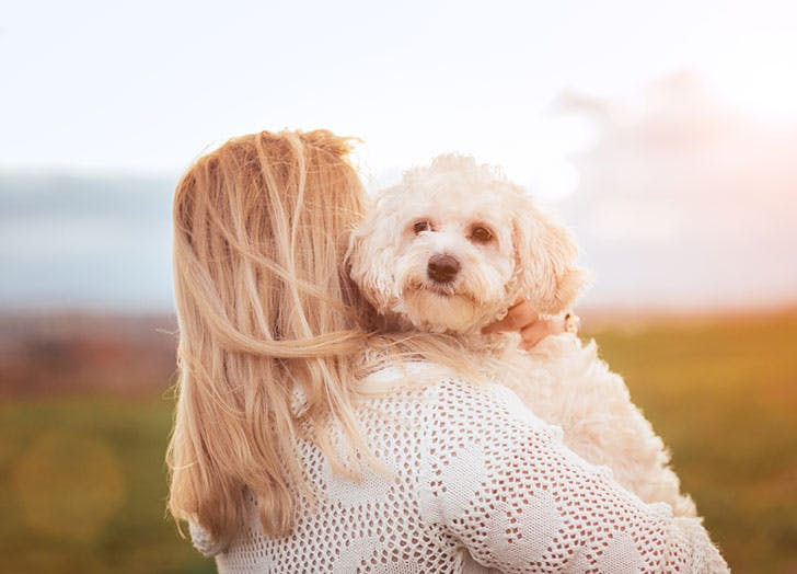 Blonde girl with a Maltese dog