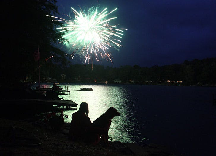 Dog and owner watching the fireworks in the dark