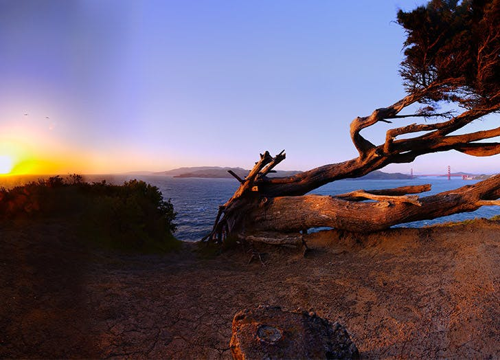 SF best hikes lands end LIST