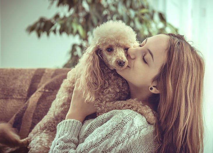 Woman cuddling with her brown Poodle dog