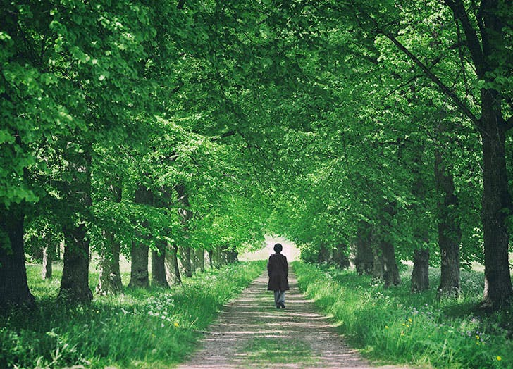 Woman walking by herself in a green forest