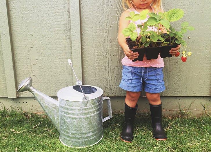 adult task garden