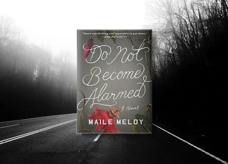 best summer thrillers meloy