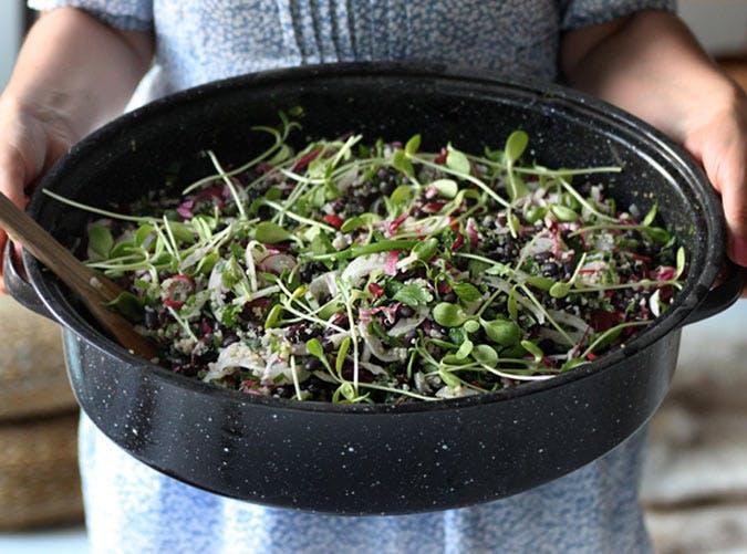 black bean salad 501