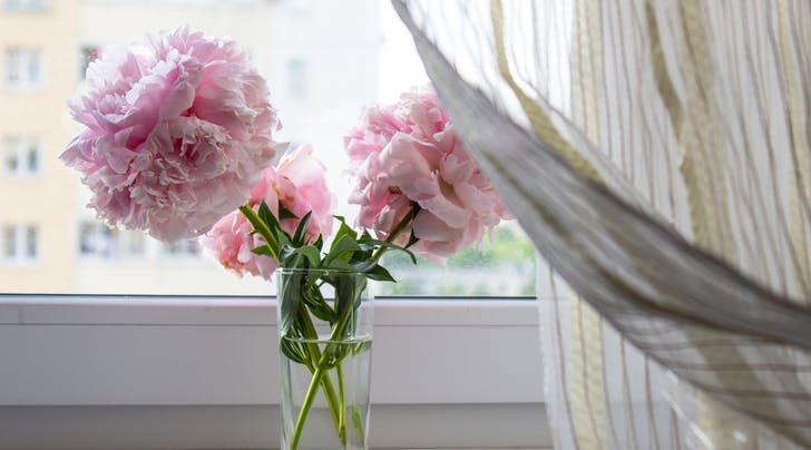 The Easiest Trick for Extending the Life of Your Fresh-Cut Flowers