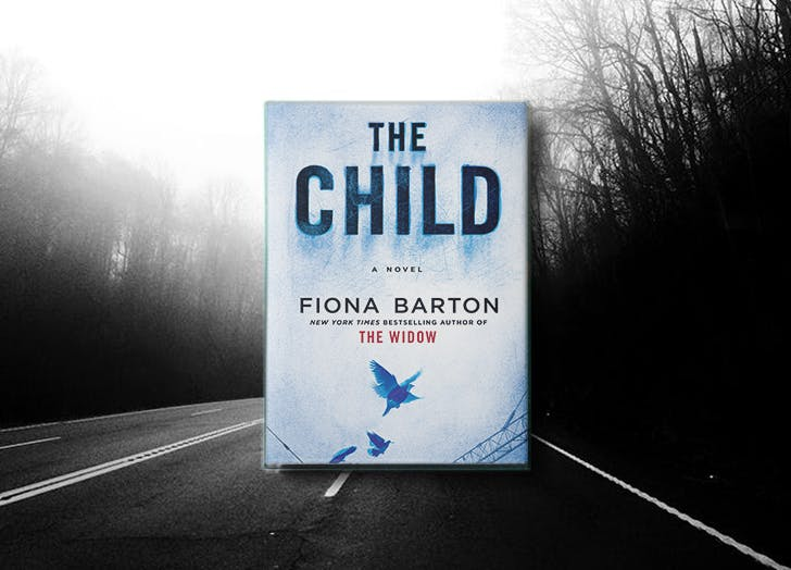new thrillers fiona barton