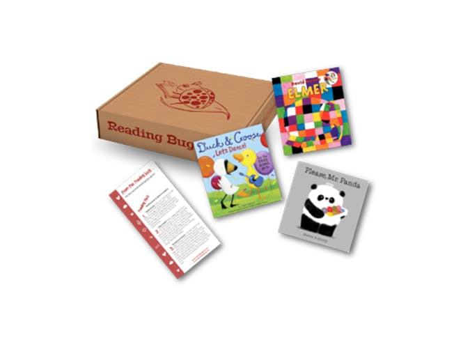 reading bug subscription box