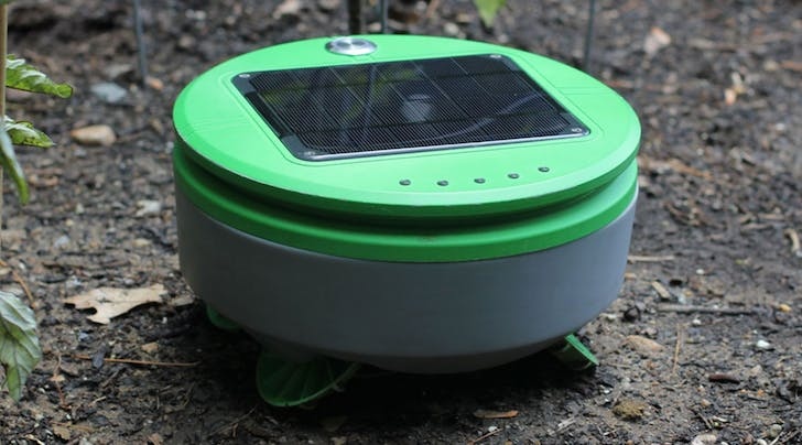 There's Now a Roomba for Killing Weeds in Your Garden