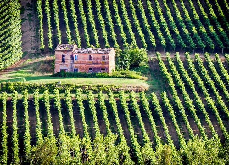 winery europe
