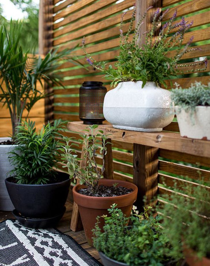 Ways To Get Privacy In Backyard ways to make your yard private - purewow