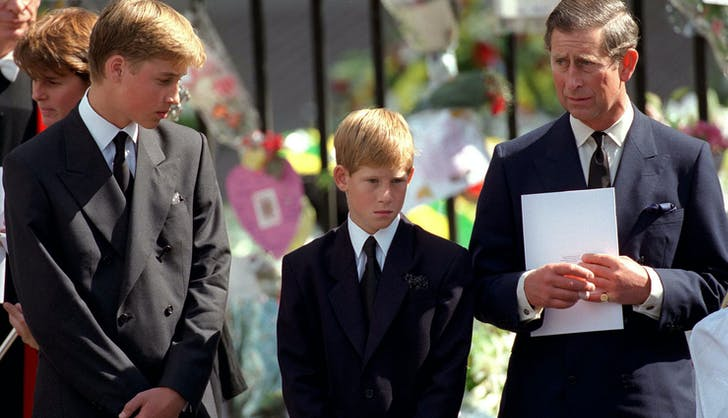 Prince William Prince Harry Prince Charles Princess Diana funeral