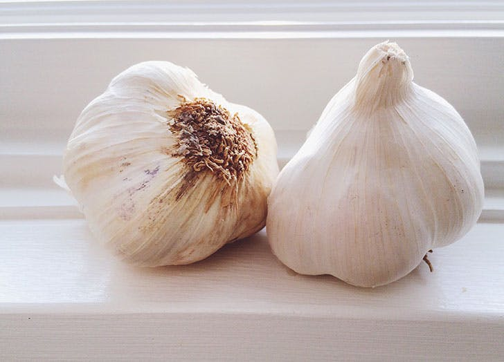 fewer mosquito bites eat garlic