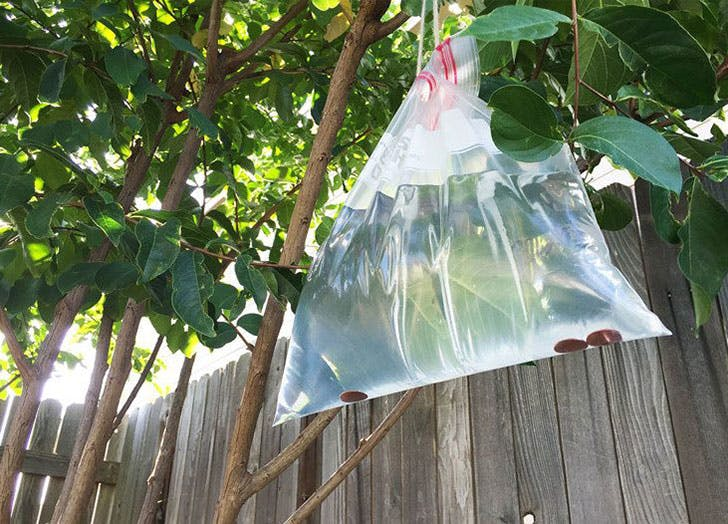 fewer mosquito bites water bag