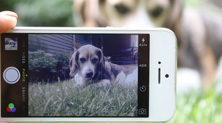 There's a New Secret to Taking Amazing iPhone Photos