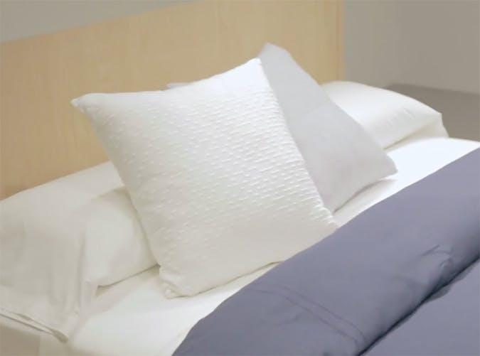 staycation bedfold
