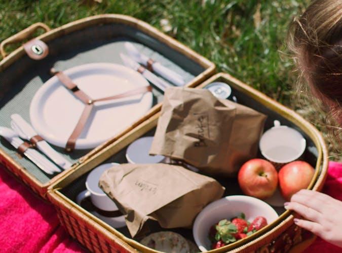 staycation picnic