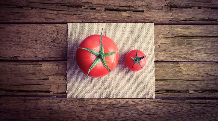 The 2 Basic Rules for Keeping Tomatoes Fresh