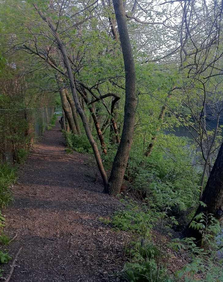 CHI prettiest places riverbank neighbors park LIST1