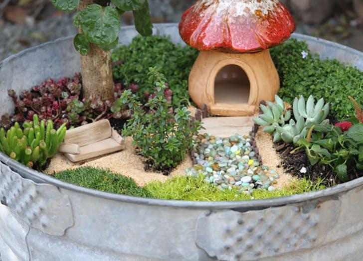 Cute Fairy Garden with mushroom house