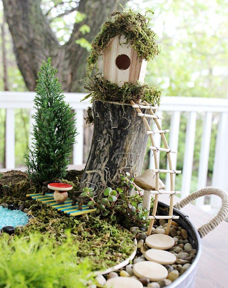 Easy Fairy Garden on a budget