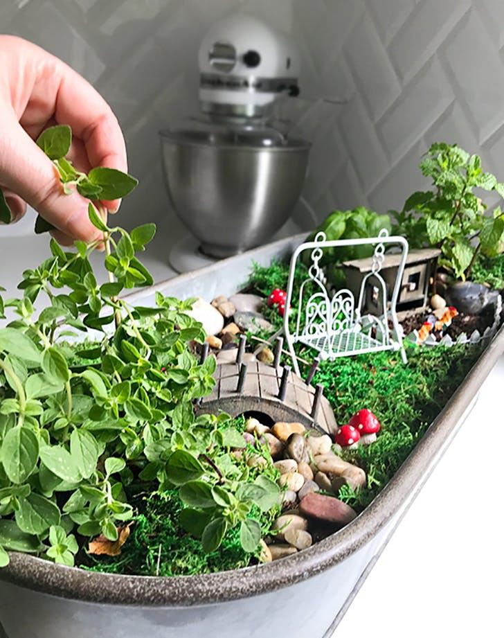 Kitchen Herb Fairy Garden Craft