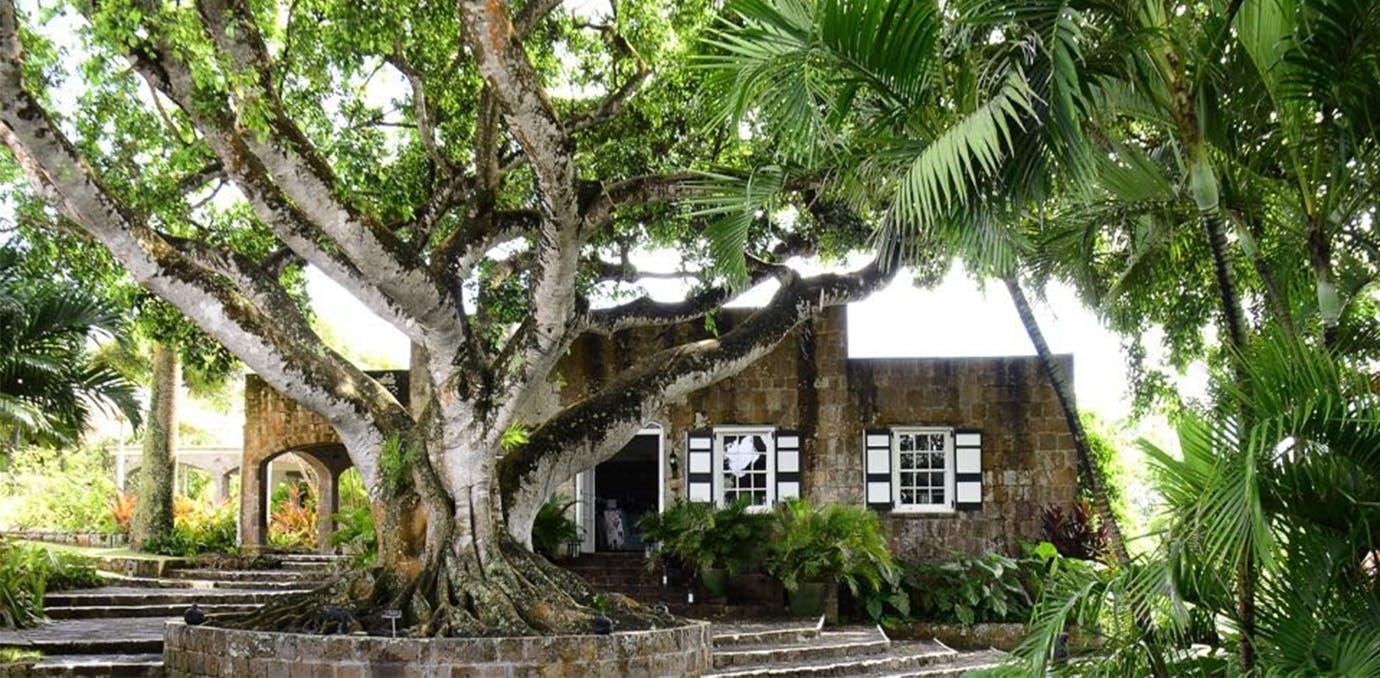 Montpelier Plantation   Beach  Nevis  elopement packages