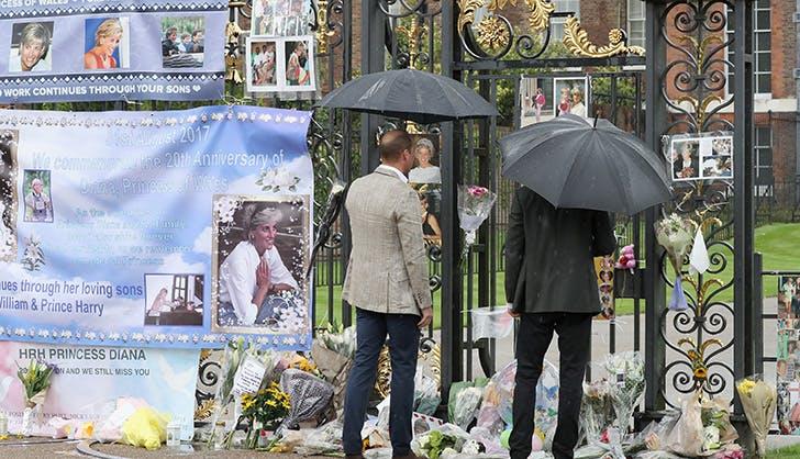 Prince William Prince Harry Princess Diana Tribute 3