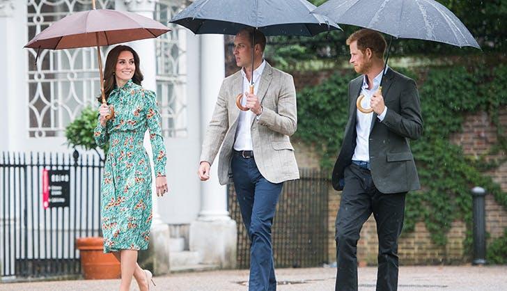 Prince William Prince Harry Princess Diana Tribute 4
