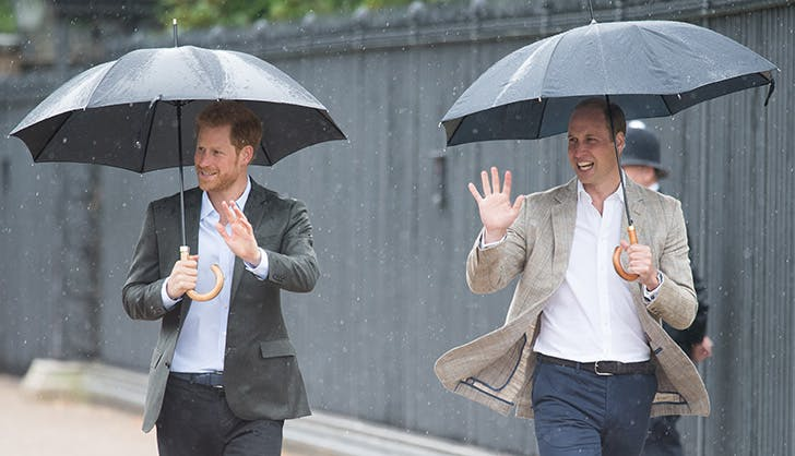 Prince William Prince Harry Princess Diana Tribute 6